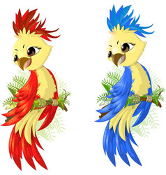 two options parrot vector image