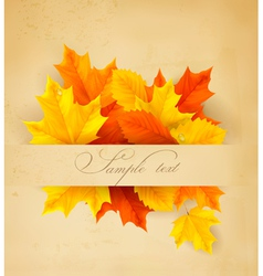 autumn background with colorful leaves and old vector image vector image