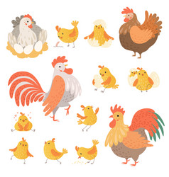 chicken and rooster funny domestic farm animals vector image