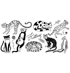 collection cats washing playing and sleeping vector image
