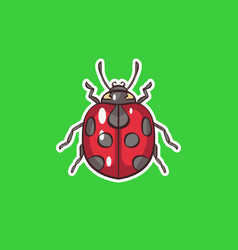 ladybug in vector image