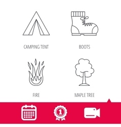 Maple tree camping tent and hiking boots vector