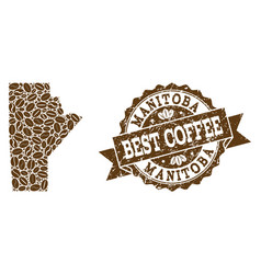 Mosaic map of manitoba province with coffee beans vector