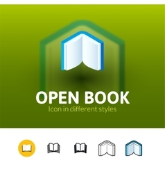 Open book icon in different style vector image