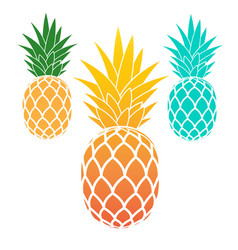 Set of pineapples vector