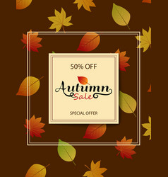 the design of the poster for the fall discount on vector image