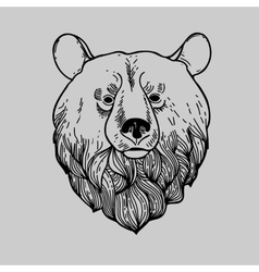 Graphic Bear Head Logo vector image vector image