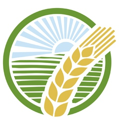 wheat label vector image vector image