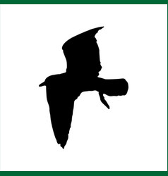 flying seagull bird black silhouette isolated on vector image