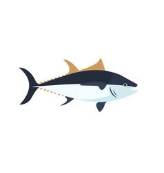 Atlantic bluefin tuna fish simple cartoon color vector