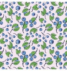 Blueberry 3 vector