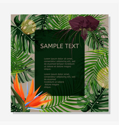 Colorful design poster exotic tropical leaves vector