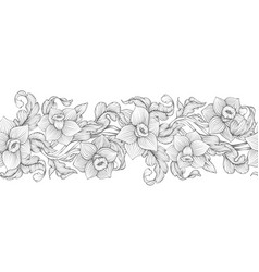 Daffodils narcissus dense outline sketch vector