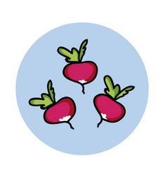 radish hand drawn icon cartoon vegetable healthy vector image