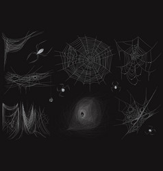set of different realistic thin spider web vector image