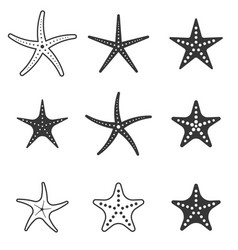 Set of starfish icon silhouette icon vector