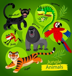 wild Jungle animals vector image