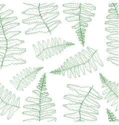 fern silhouette collection green isolated vector image vector image