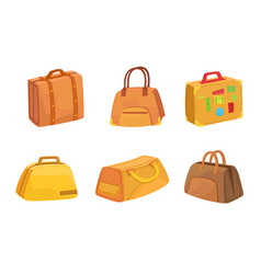 collection suitcases set leather bags for vector image