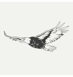 Eagle Black and white style vector