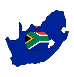 South African apple vector image