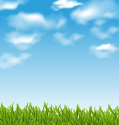 Summer background with green grass and sky vector image vector image