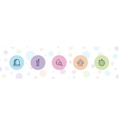 5 elements icons vector