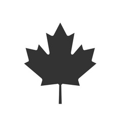 Canada text or labels with silhouette of forest vector