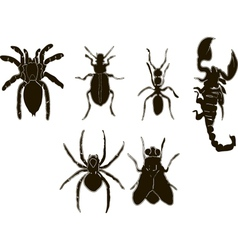 Insects icons set black and white vector image vector image