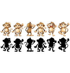 Monkeys and its silhouette in different posts vector