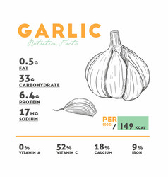 nutrition facts of raw garlic vector image