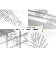set transparent shadow overlay effects vector image