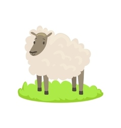 Sheep Farm Animal Cartoon Farm Related Element On vector image