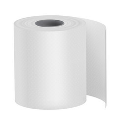 toilet paper bath tissue or loo roll personal vector image