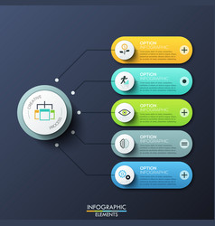 modern infographic design template with 5 rounded vector image