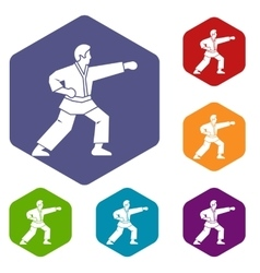Aikido fighter icons set vector image