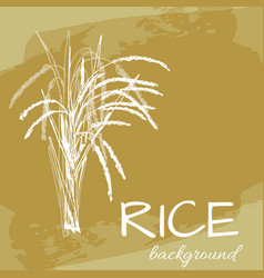 Background with rice logo hand-drawn plant vector