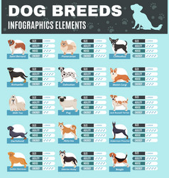 breed dogs infographics vector image