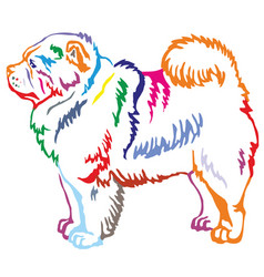 Colorful decorative standing portrait of chow chow vector