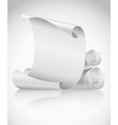 Scrolls paper vector