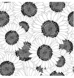 sunflower outline seamless background vector image