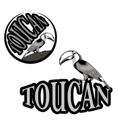 logo with the image of a toucan vector image vector image