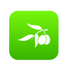 olive tree branch with two olives icon digital vector image