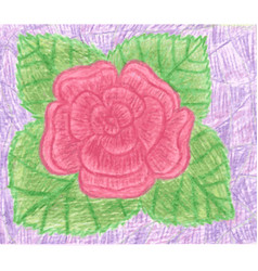 red rose with green leafs on violet background vector image