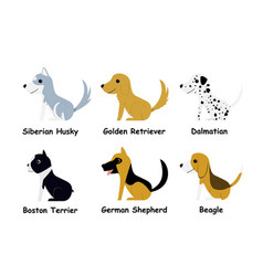 set puppy dog in flat style side view vector image