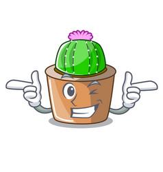 Wink cartoon star cactus plants at cactus farm vector