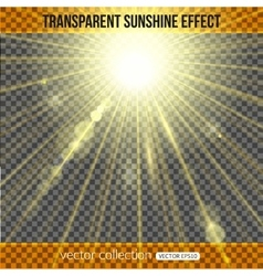 Sunshine effect over transparent background vector image