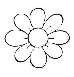 a flower sketch vector image