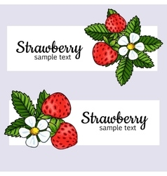 Beautiful strawberries web banners vector