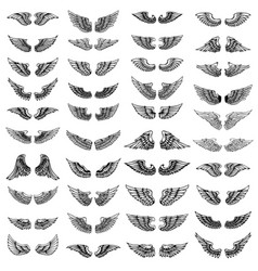 big set wings on white background design vector image